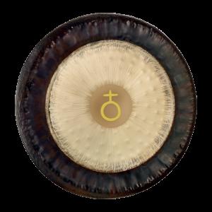 Planetary Gongs