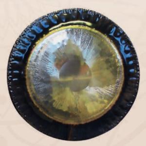 Terra Mobilis Gongs